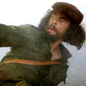 Benicio Del Toro, Che