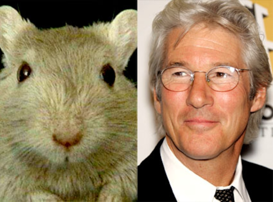 Richard Gere, Gerbil