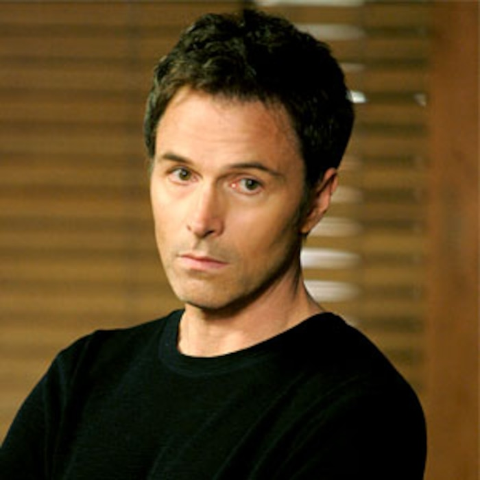 Private Practice, Tim Daly