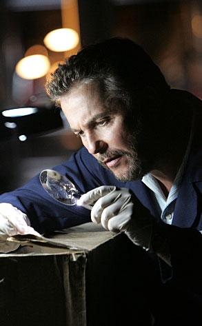 William Peteresen, CSI