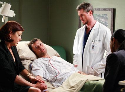 Eric Dane, Kate Walsh, Grant Show, Audra McDonald, Grey's Anatomy