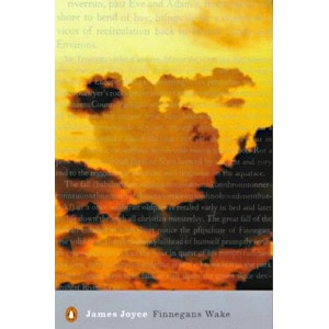 Finnegan's Wake Book Cover, James Joyce
