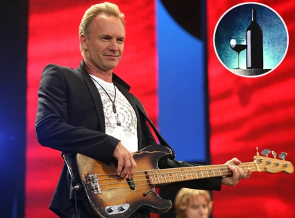 Sting, Wine Bottle and Glass