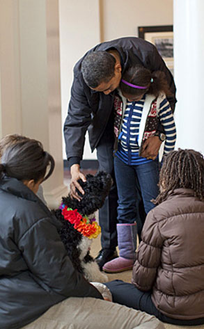 Barack Obama, Dog