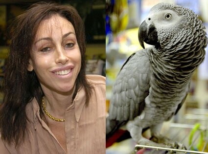 Heidi Fleiss, Parrot