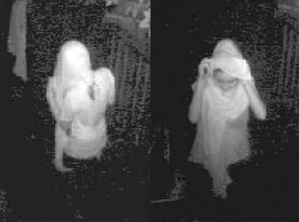 Lindsay Lohan Burglars