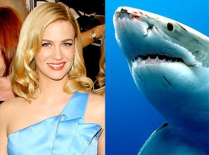 January Jones, Shark