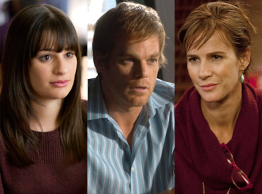 Lea Michele, Glee, Michael C. Hall, Dexter, Rachel Griffiths, Brothers and Sisters