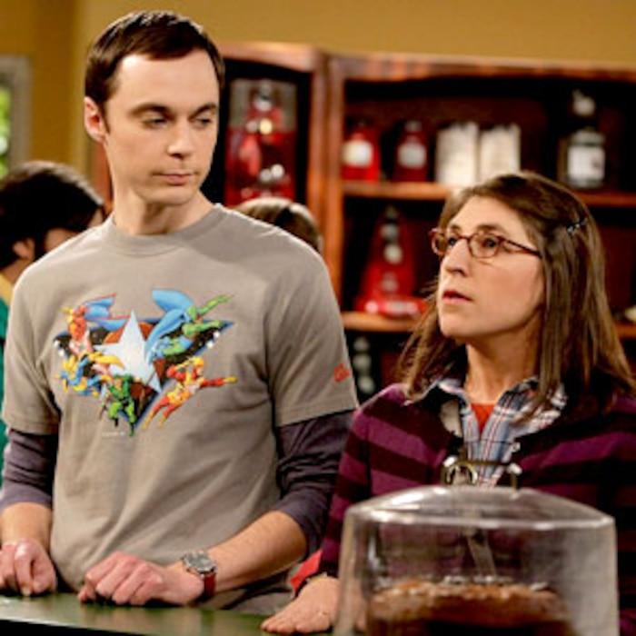 Jim Parsons, Mayim Bialik, Big Bang Theory