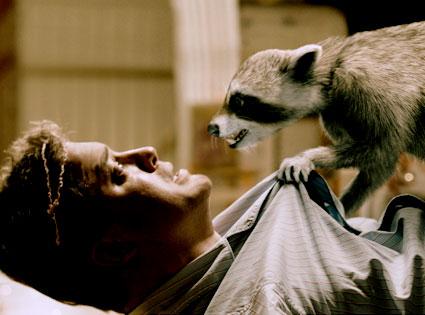 Brendan Fraser, Furry Vengeance