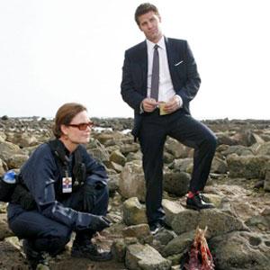 Bones, David Boreanaz, Emily Deschanel