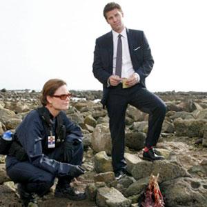 Bones, David Boreanaz, Emily Deschanel