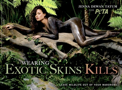 Jenna Dewan, PETA