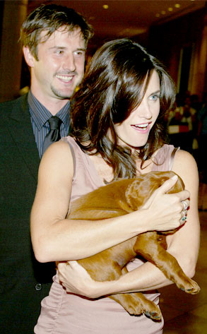 David Arquette, Courteney Cox
