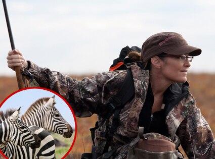 Sarah Palin, Zebras