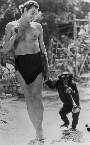 Johnny Weissmuller, chimpanzee Cheetah