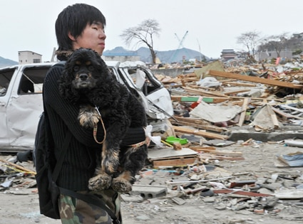 Japan, Tsunami, Earthquake, Man carrying dog