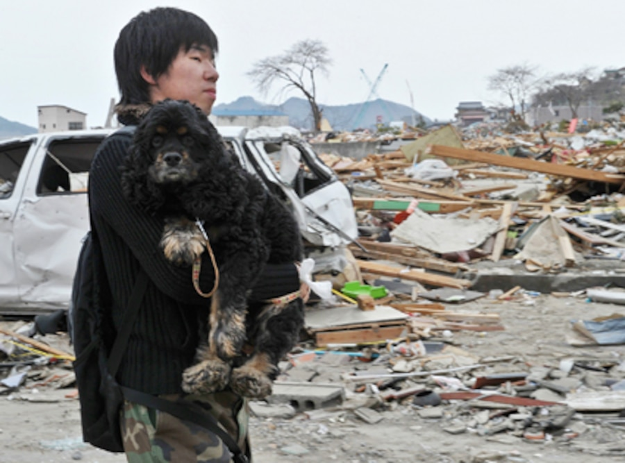 Japan, Tsunami, Earthquake, Man carrying dog