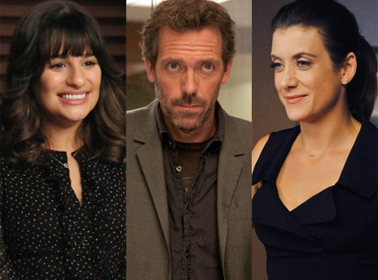 Lea Michele, Glee, Hugh Laurie, House, Kate Walsh, Private Practice