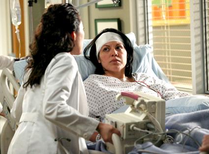 Grey's Anatomy, Sara Ramirez, Sandra Oh