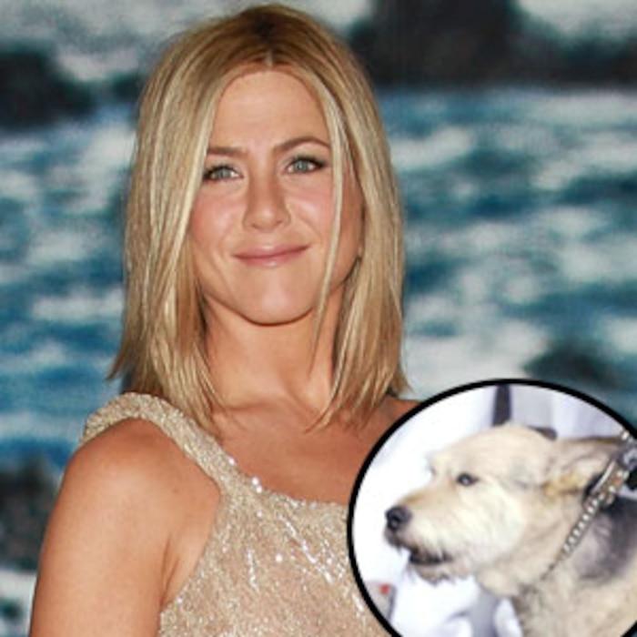 Jennifer Aniston, Norman