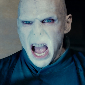Harry Potter and the Deathly Hallows Part 2, Ralph Fiennes
