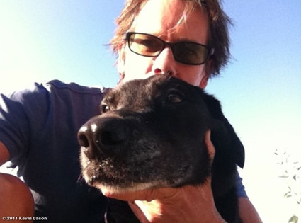 Kevin Bacon, WhoSay