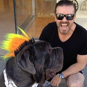 Ricky Gervais, Rufio