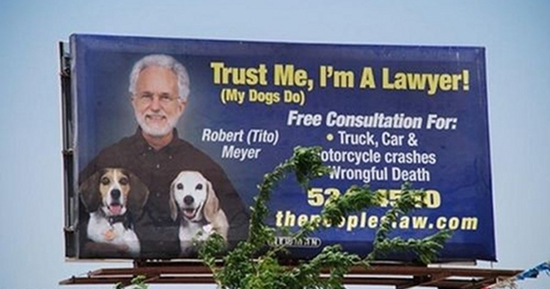 Dog Lawyer 550X289