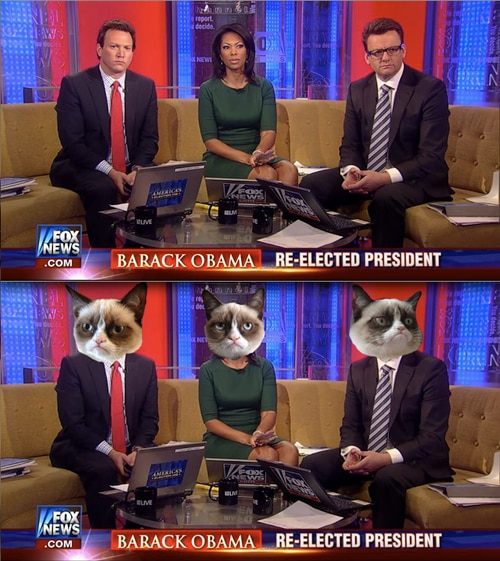 Election Night GIFs