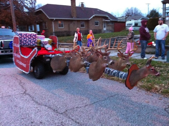 Taxidermy Sleigh
