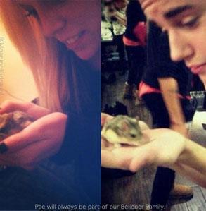 Victoria Blair, Justin Bieber, PAC the hamster
