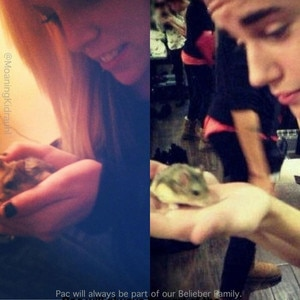 Victoria Blair, Justin Bieber, PAC the hamster