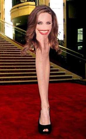 Angelina Leg