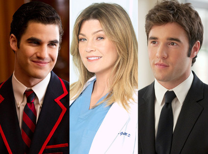 Darren Criss, Glee, Ellen Pompeo, Grey's Anatomy, Joshua Bowman, Revenge