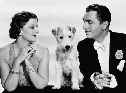 The Thin Man, Asta