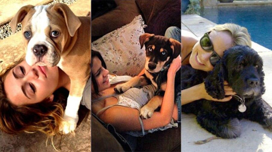Miley Cyrus, Selena Gomez, Stacy Keibler, Puppy, Twitter