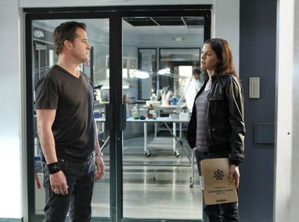 Jorja Fox, George Eads, CSI