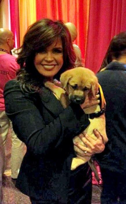 Marie Osmond, Puppy, Twit Pic