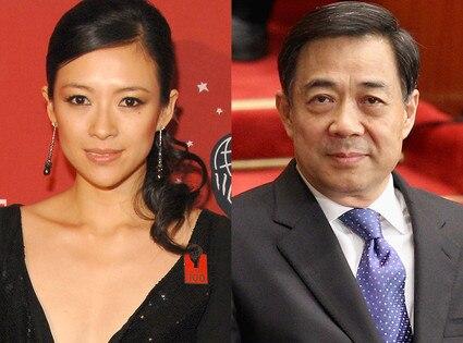 Zhang Ziyi, Bo Xilai