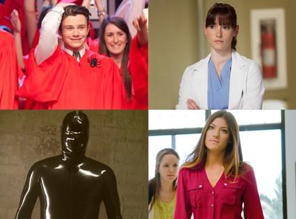 Glee, Grey's Anatomy, American Horror Story, Dexter
