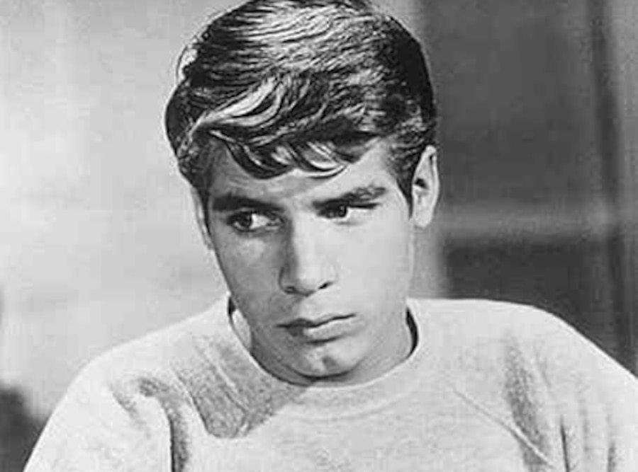 Don Grady, My Three Sons