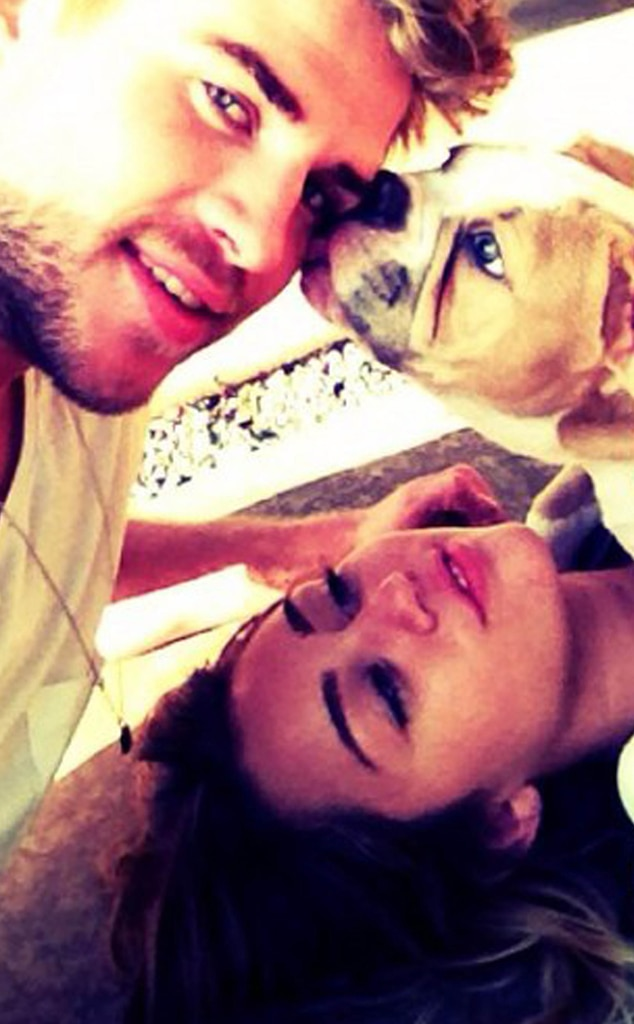 Miley Cyrus, Liam Hemsworth, Ziggy