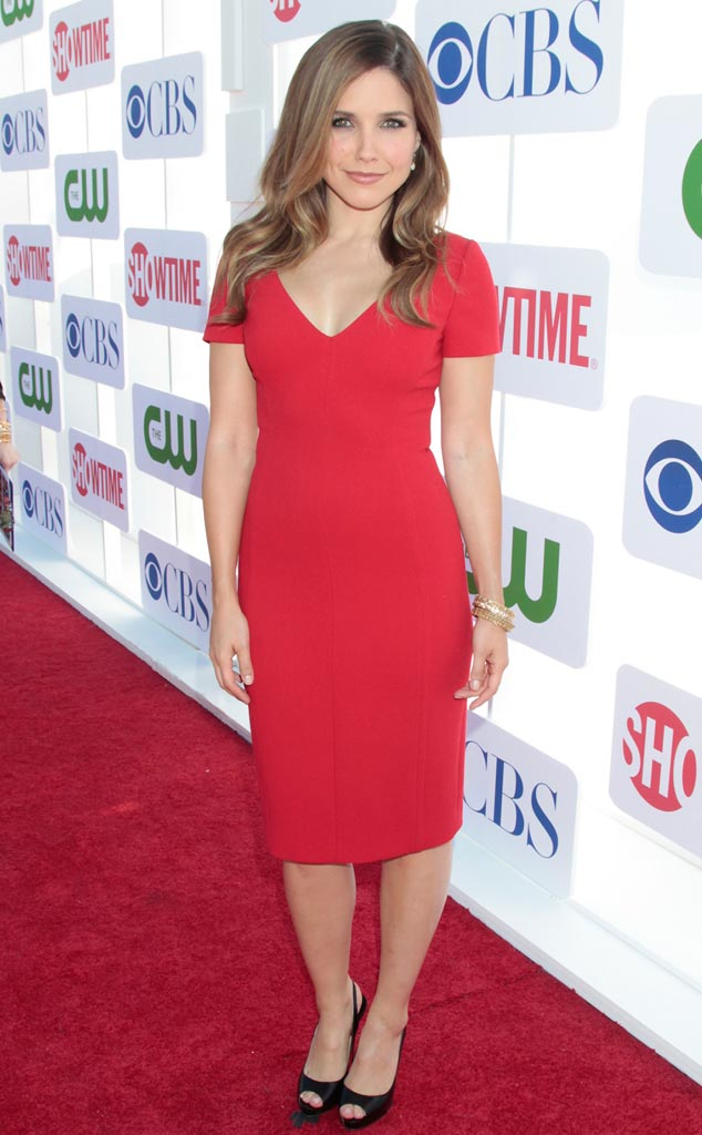 TCA Press Tour, Sophia Bush