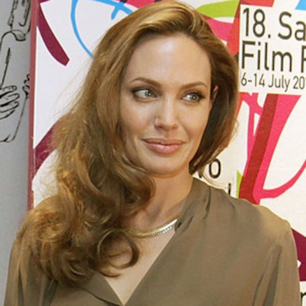 angelina jolie role model essay As angelina jolie announces in a new york times op-ed that she has  with the  united nations has elevated her into a global role model.