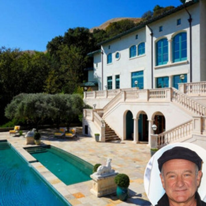 Robin Williams, Napa Valley Vineyard