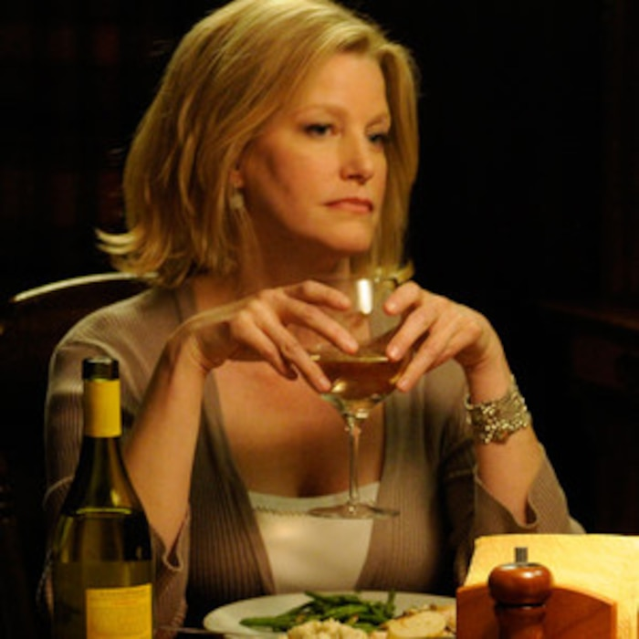 Breaking Bad, Anna Gunn