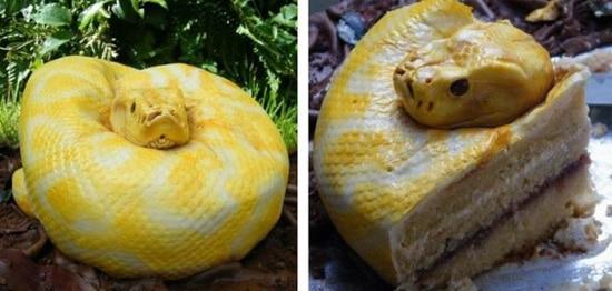 Snake Cake Soup X3