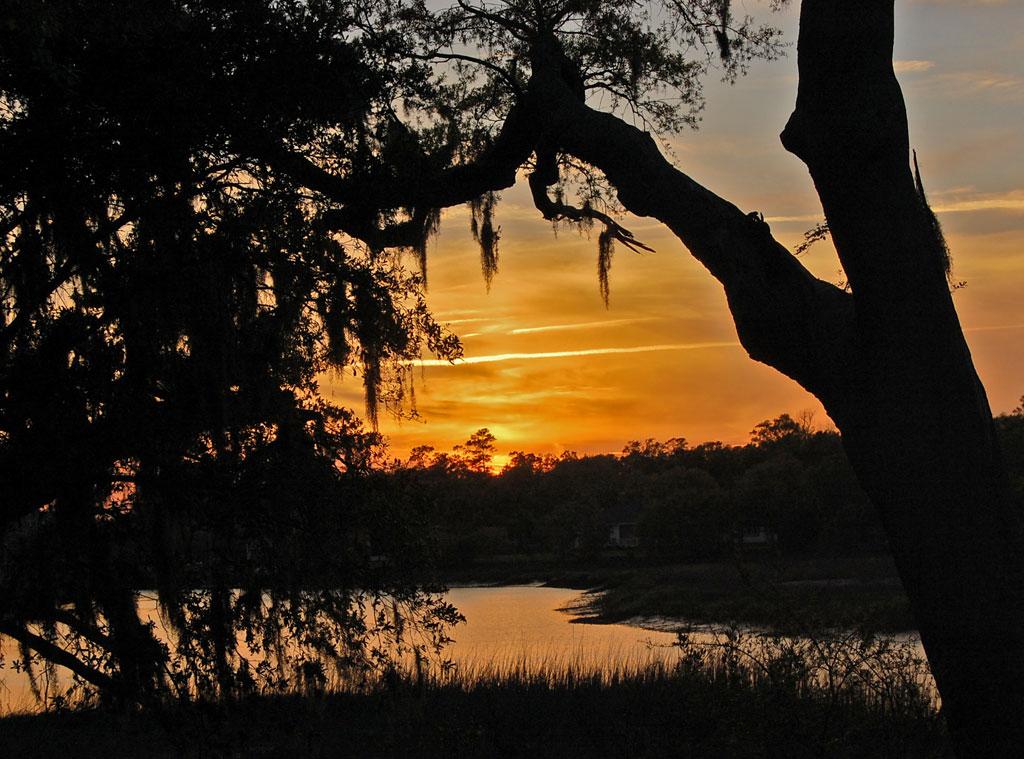 Boone Hall Plantation, Blake Lively, Ryan Reynolds