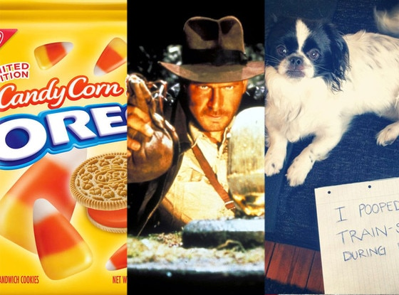 Candy-corn flavored Oreos, Raiders of the Lost Ark, Dog-shaming